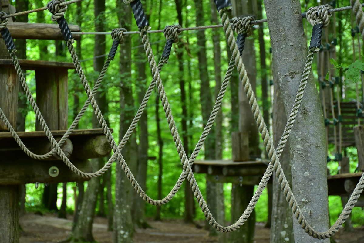 Ekskluzywna majówka w środku lasu